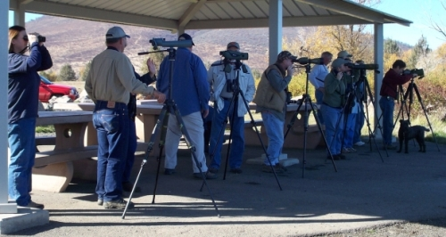 bird watchers, birders, watching birds