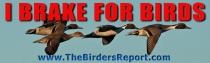 I Brake For Birds