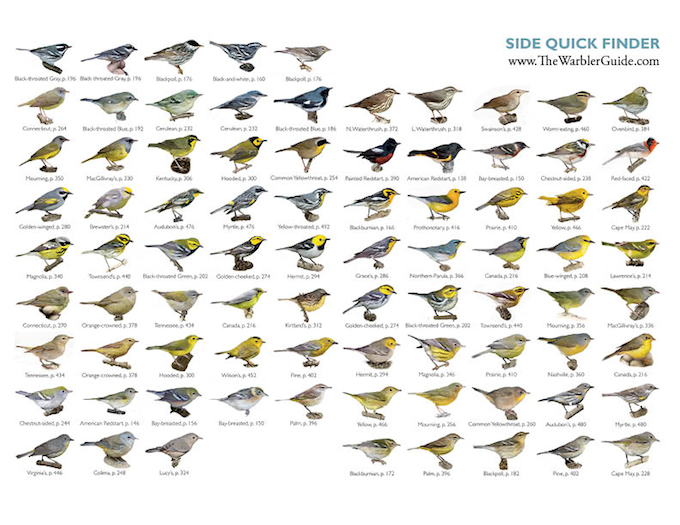 Warbler Guide Side Quick Finder