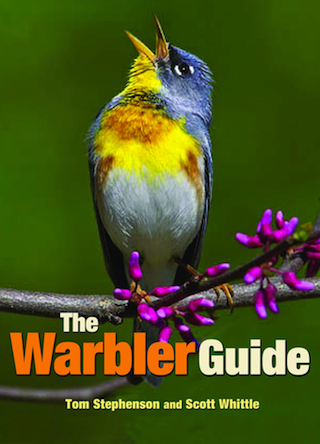 Thumbnail image for The Warbler Guide: A Review