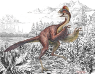 Thumbnail image for Dinosaur Scientists Call It the Chicken From Hell